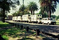 Bow Tie Removals fleet of trucks parked at Centennial Parklands located in the Eastern Suburbs of Sydney
